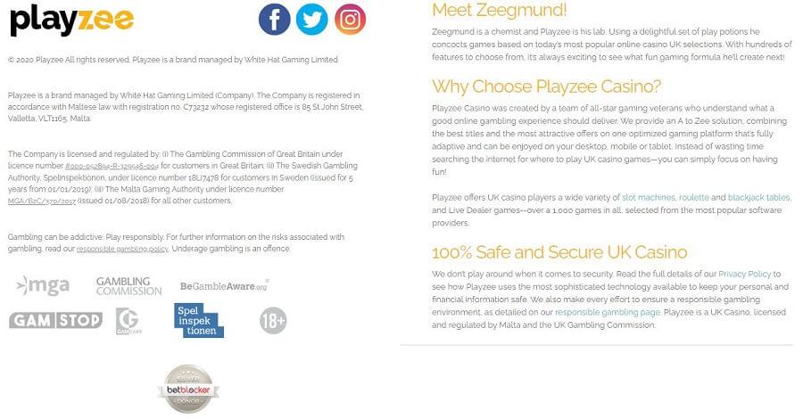 Playzee Security
